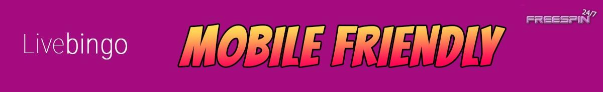 Live Bingo Casino-mobile-friendly